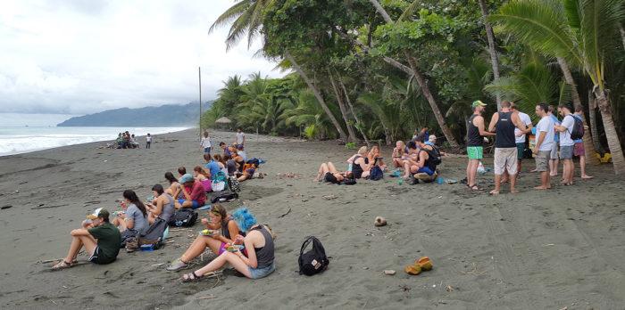 osa peninsula beach clean up