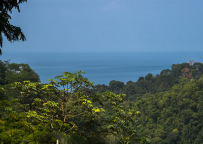 costa-rica-luna-lodge-G5