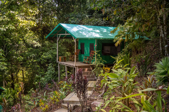 accommodation luna lodge - costa rica
