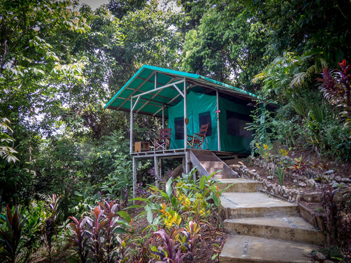 accommodation luna lodge - costa rica